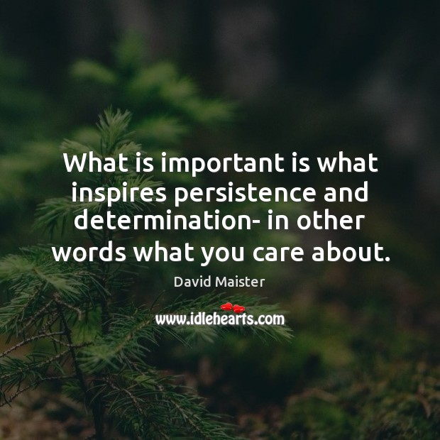 What is important is what inspires persistence and determination- in other words David Maister Picture Quote