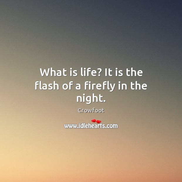 Image, What is life? It is the flash of a firefly in the night.