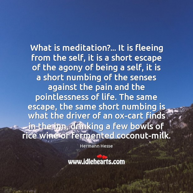 What is meditation?… It is fleeing from the self, it is a Hermann Hesse Picture Quote