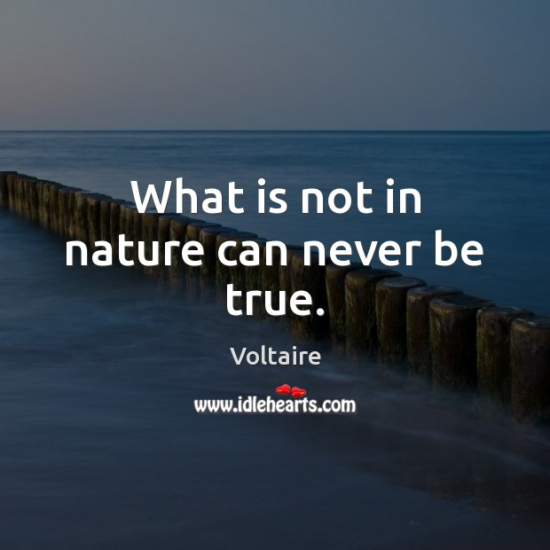 Image, What is not in nature can never be true.