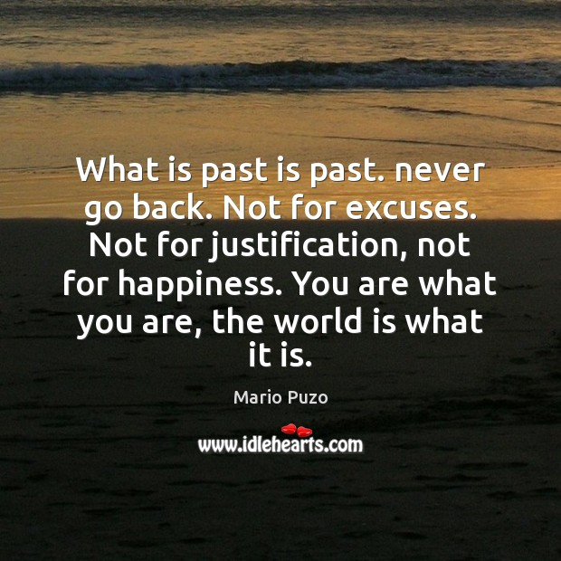 What is past is past. never go back. Not for excuses. Not Mario Puzo Picture Quote