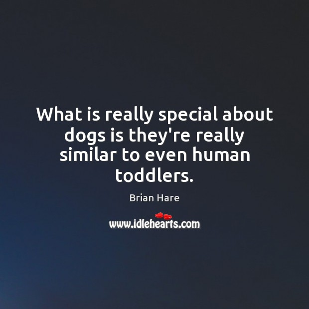 Image, What is really special about dogs is they're really similar to even human toddlers.