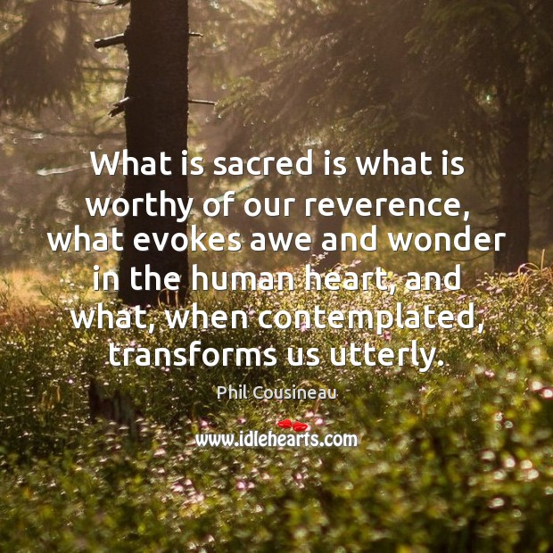 Image, What is sacred is what is worthy of our reverence, what evokes