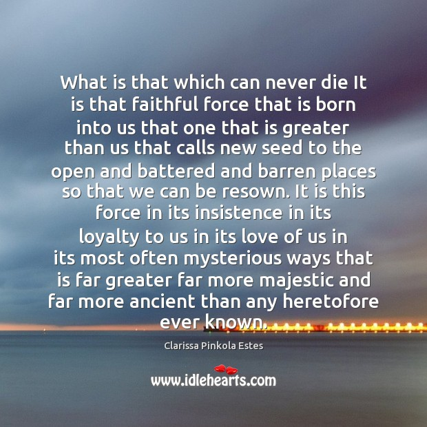 What is that which can never die It is that faithful force Clarissa Pinkola Estes Picture Quote