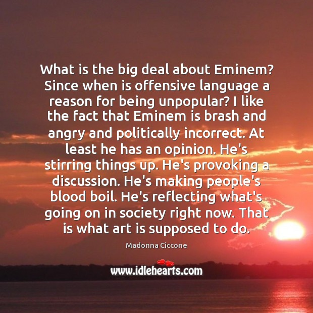 Image, What is the big deal about Eminem? Since when is offensive language