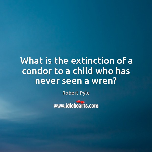 What is the extinction of a condor to a child who has never seen a wren? Image