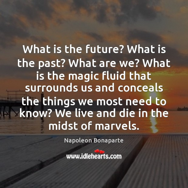 What is the future? What is the past? What are we? What Napoleon Bonaparte Picture Quote