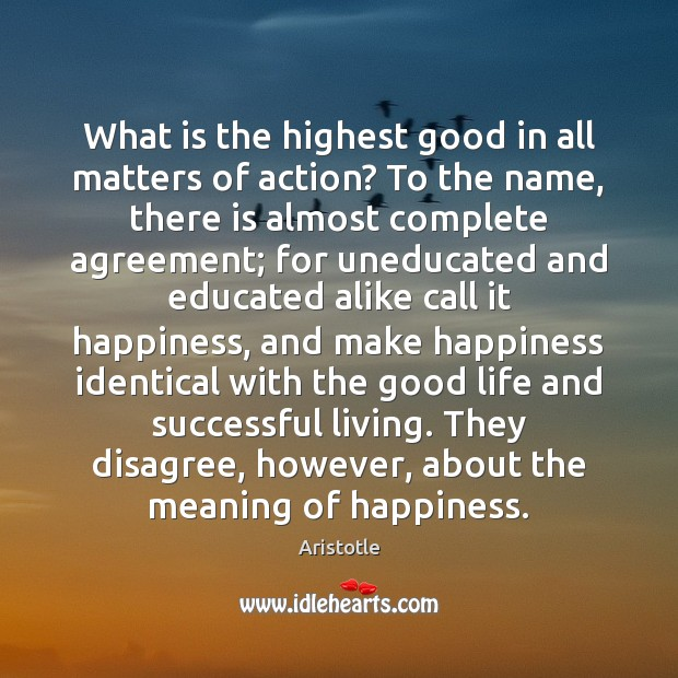 What is the highest good in all matters of action? To the Image