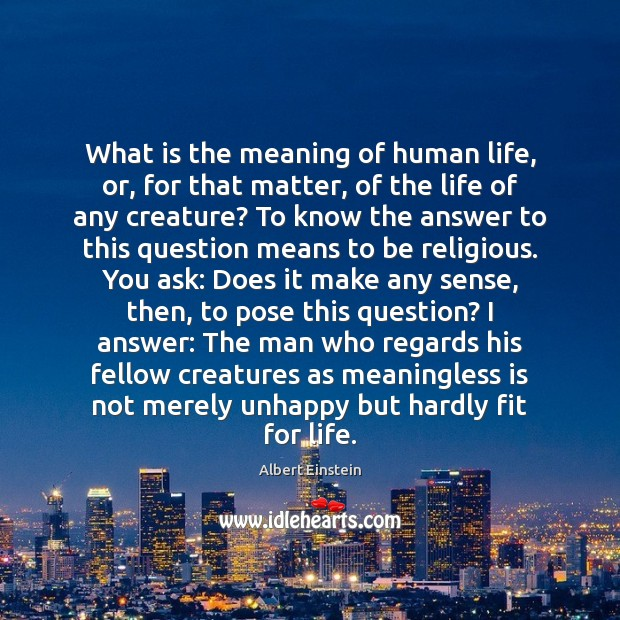 What is the meaning of human life, or, for that matter, of Image