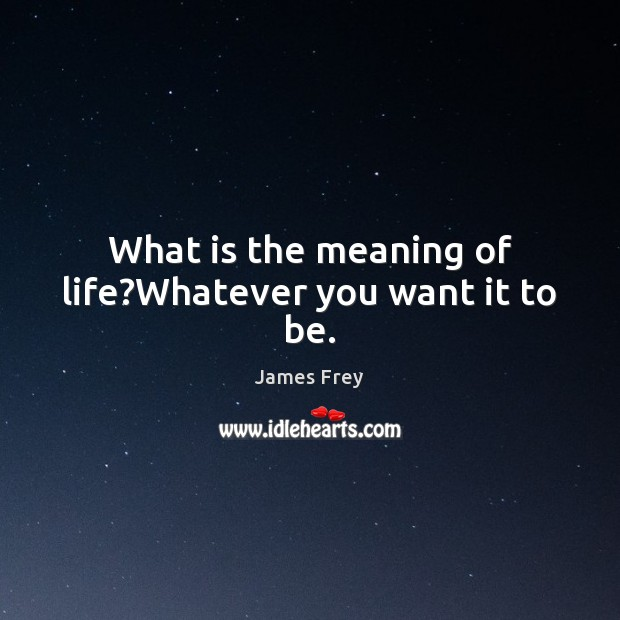 What is the meaning of life?Whatever you want it to be. James Frey Picture Quote