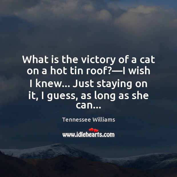 What is the victory of a cat on a hot tin roof?— Image