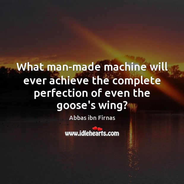 Image, What man-made machine will ever achieve the complete perfection of even the goose's wing?