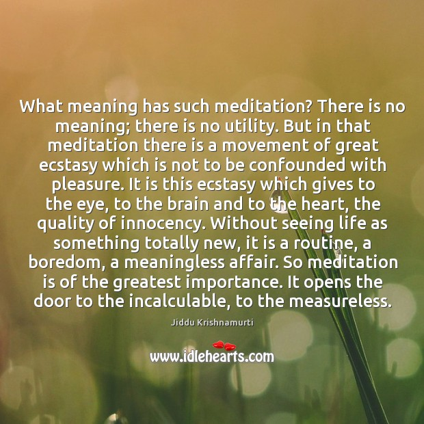 What meaning has such meditation? There is no meaning; there is no Image