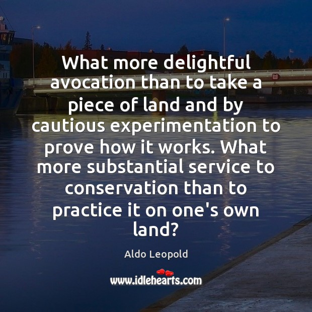 Image, What more delightful avocation than to take a piece of land and