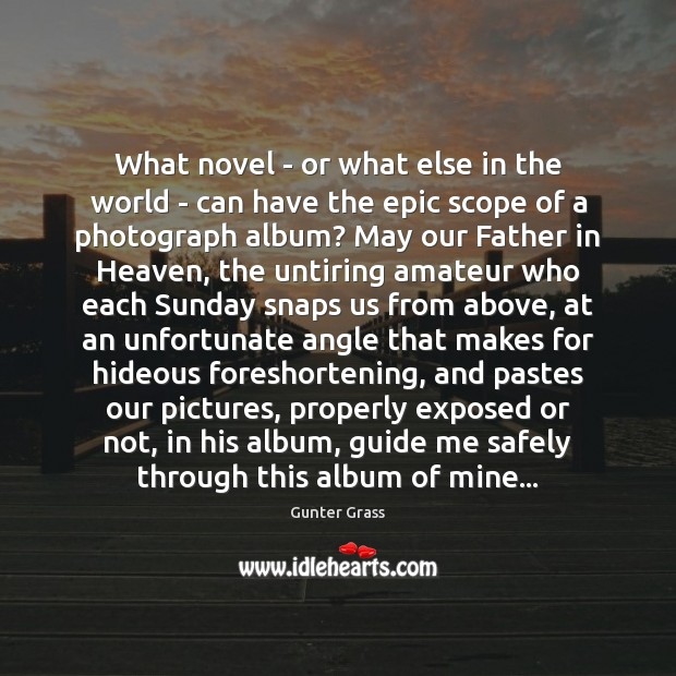 What novel – or what else in the world – can have Gunter Grass Picture Quote