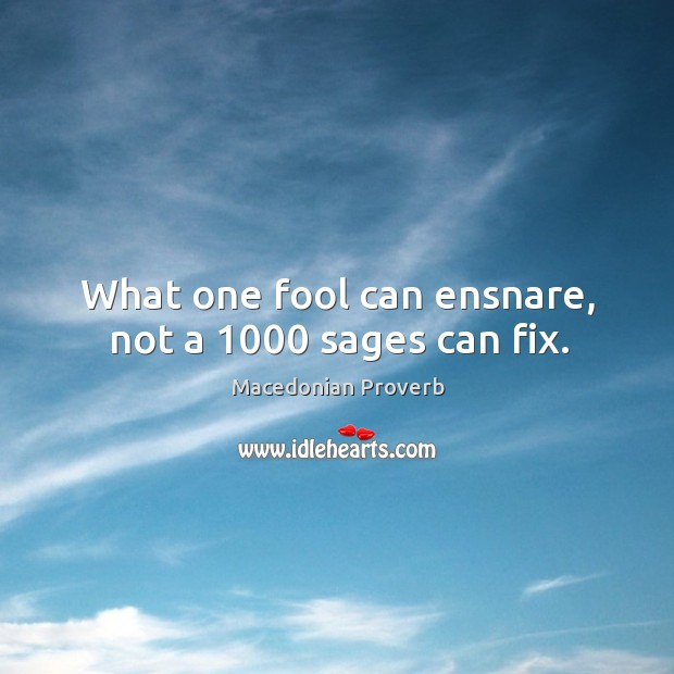 Image, What one fool can ensnare, not a 1000 sages can fix.