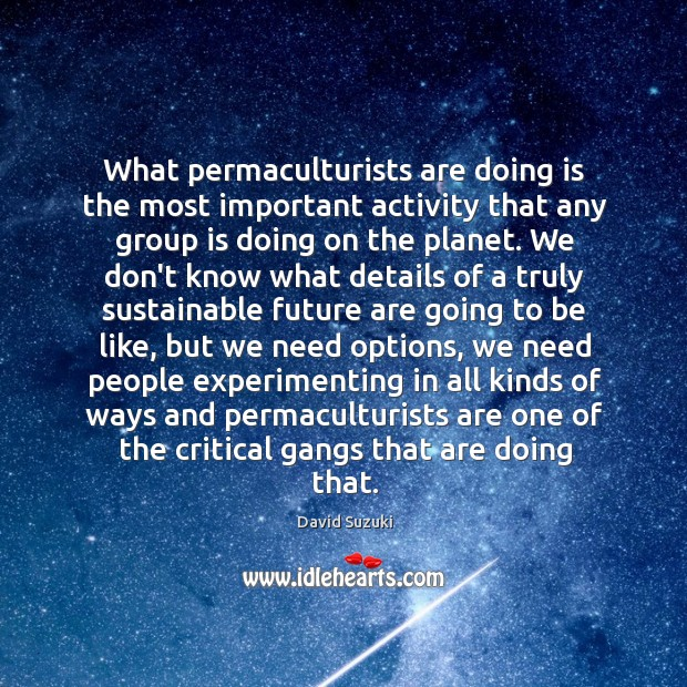 What permaculturists are doing is the most important activity that any group Image