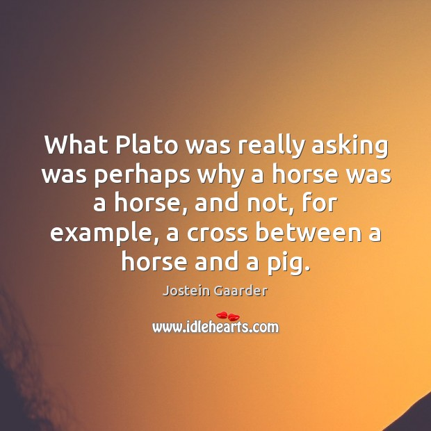 What Plato was really asking was perhaps why a horse was a Image