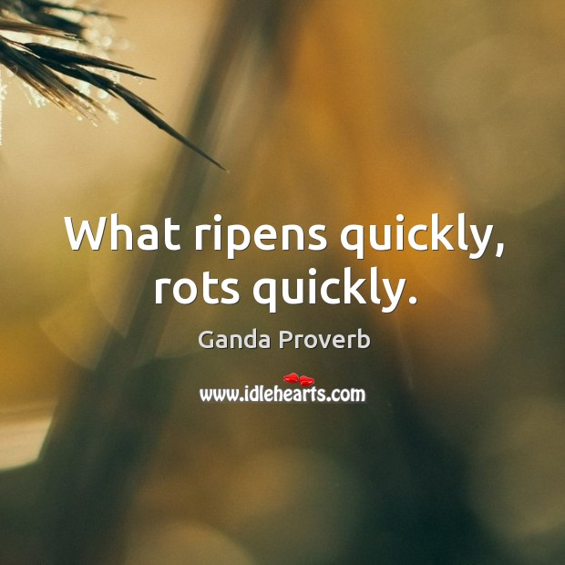 What ripens quickly, rots quickly. Ganda Proverbs Image