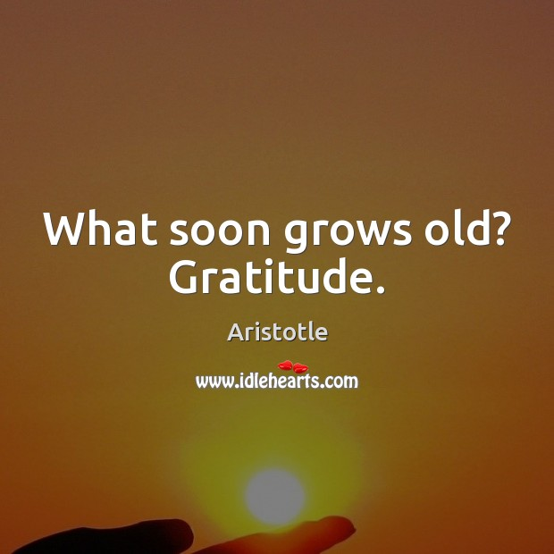Image, What soon grows old? Gratitude.
