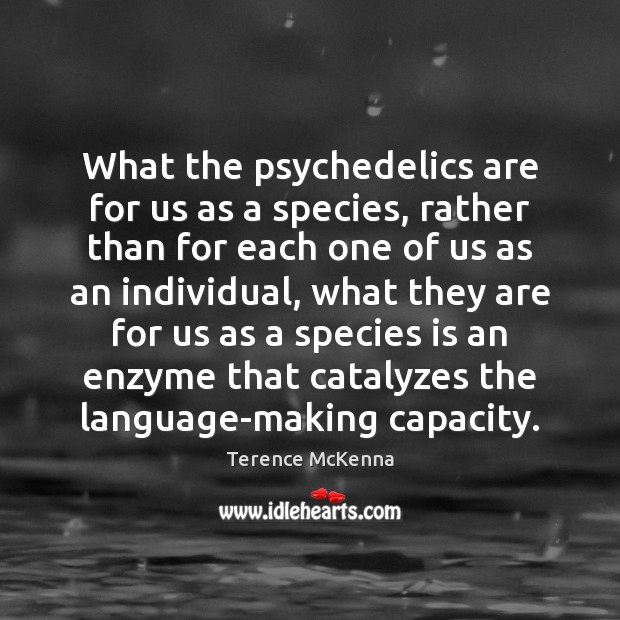 What the psychedelics are for us as a species, rather than for Image
