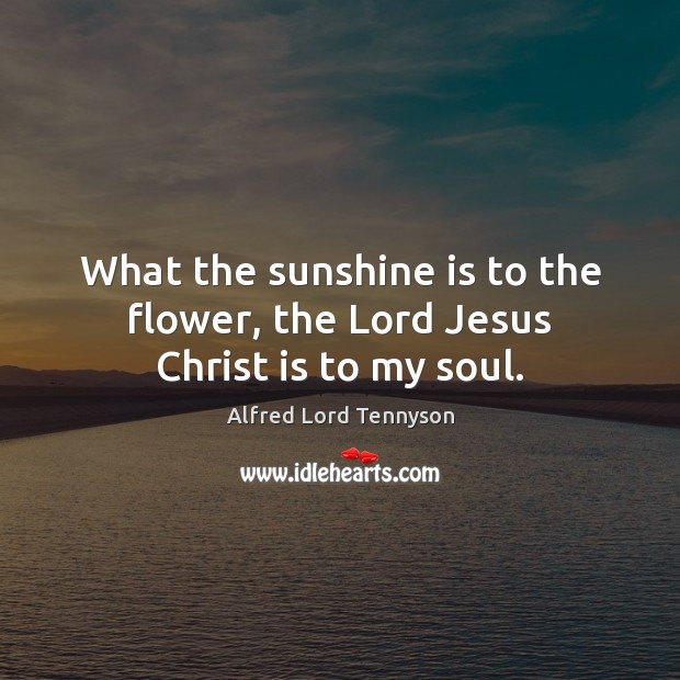 What the sunshine is to the flower, the Lord Jesus Christ is to my soul. Alfred Lord Tennyson Picture Quote