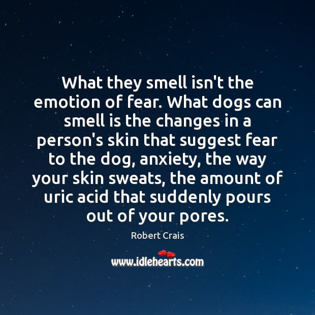 What they smell isn't the emotion of fear. What dogs can smell Robert Crais Picture Quote