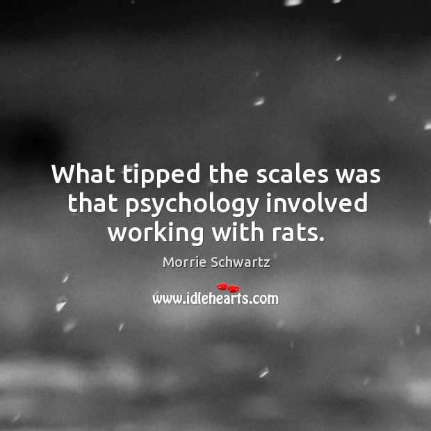 What tipped the scales was that psychology involved working with rats. Morrie Schwartz Picture Quote