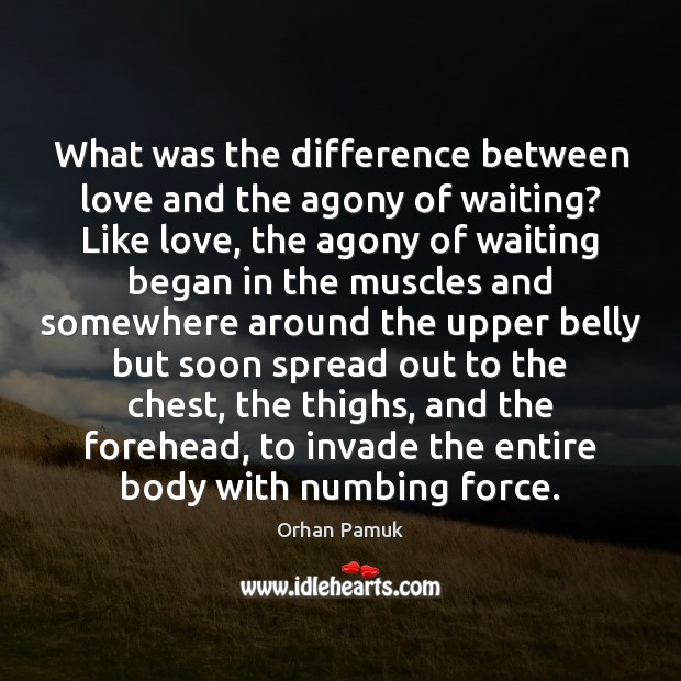 What was the difference between love and the agony of waiting? Like Orhan Pamuk Picture Quote