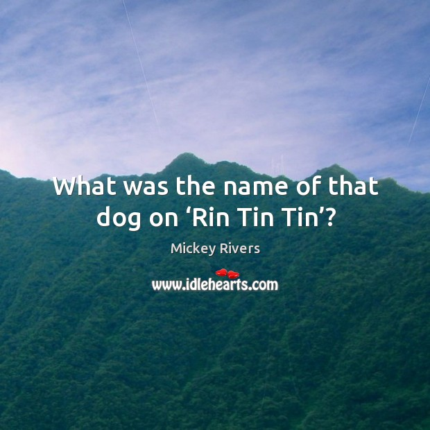 What was the name of that dog on 'rin tin tin'? Image