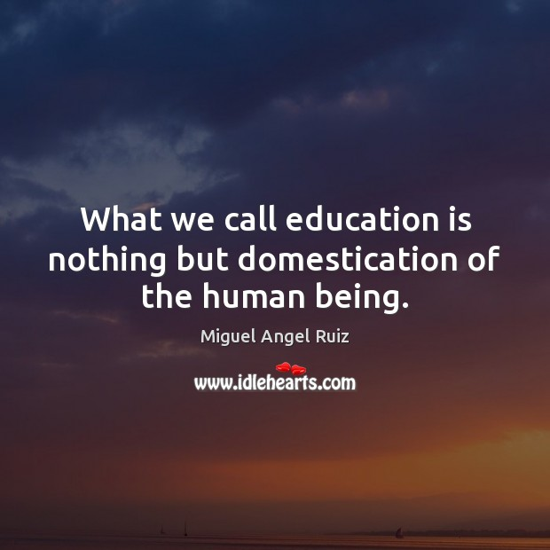 What we call education is nothing but domestication of the human being. Image