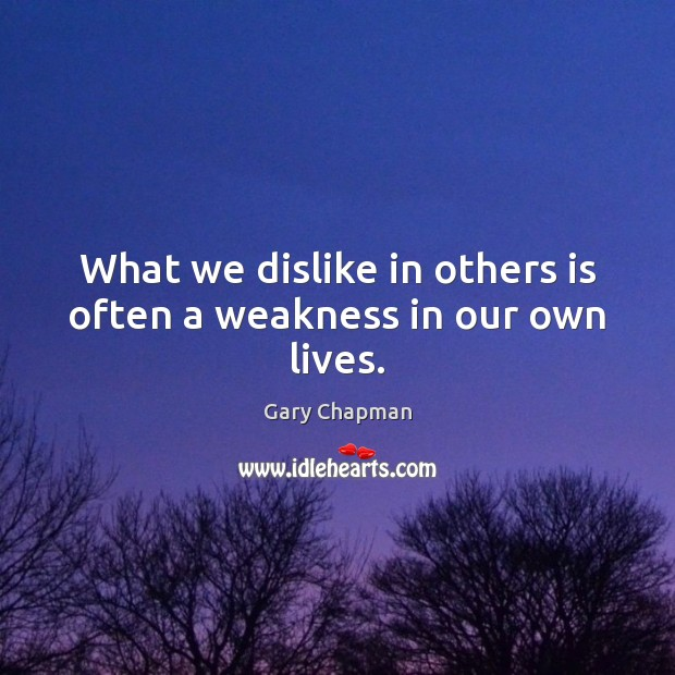 Image, What we dislike in others is often a weakness in our own lives.