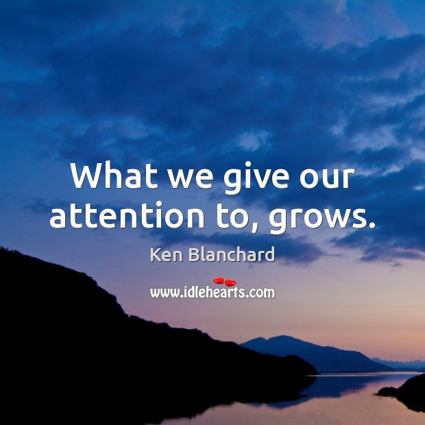 What we give our attention to, grows. Image