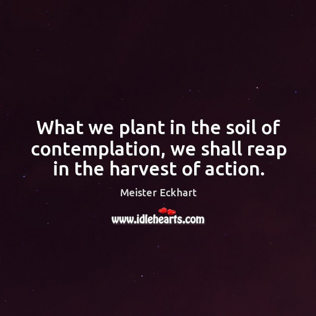What we plant in the soil of contemplation, we shall reap in the harvest of action. Image