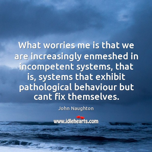What worries me is that we are increasingly enmeshed in incompetent systems, Image