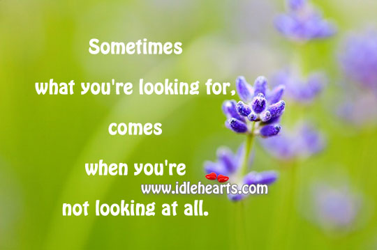 Sometimes What You're Looking For,