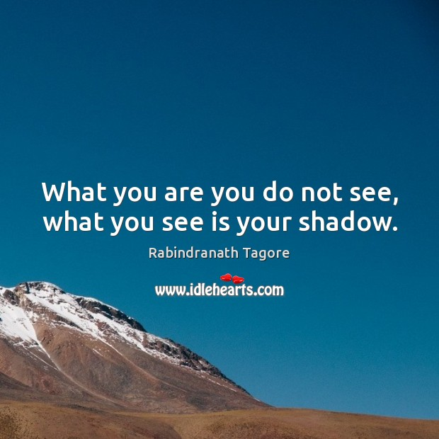 What you are you do not see, what you see is your shadow. Image