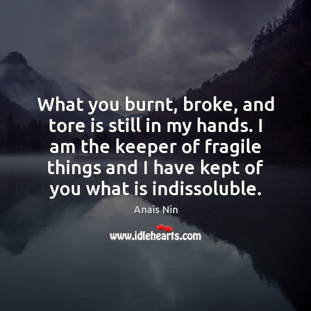 What you burnt, broke, and tore is still in my hands. I Anais Nin Picture Quote