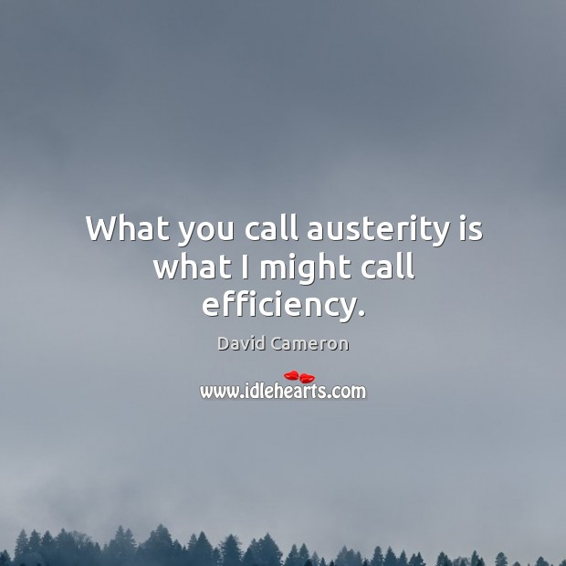 What you call austerity is what I might call efficiency. David Cameron Picture Quote