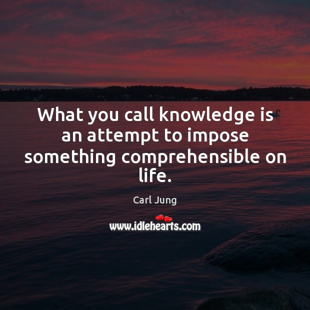 What you call knowledge is an attempt to impose something comprehensible on life. Image