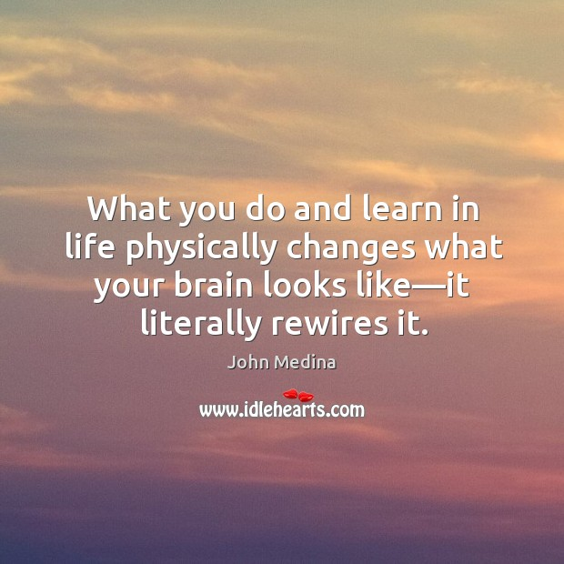 What you do and learn in life physically changes what your brain Image