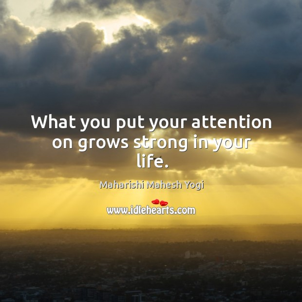 What you put your attention on grows strong in your life. Image