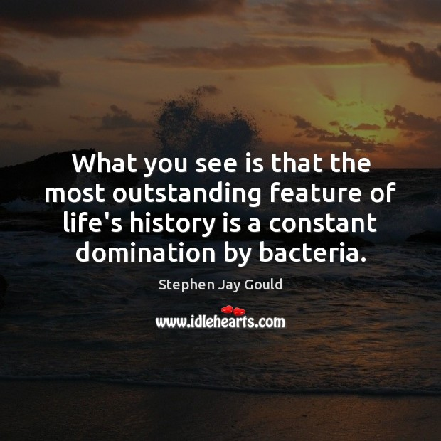 What you see is that the most outstanding feature of life's history Stephen Jay Gould Picture Quote
