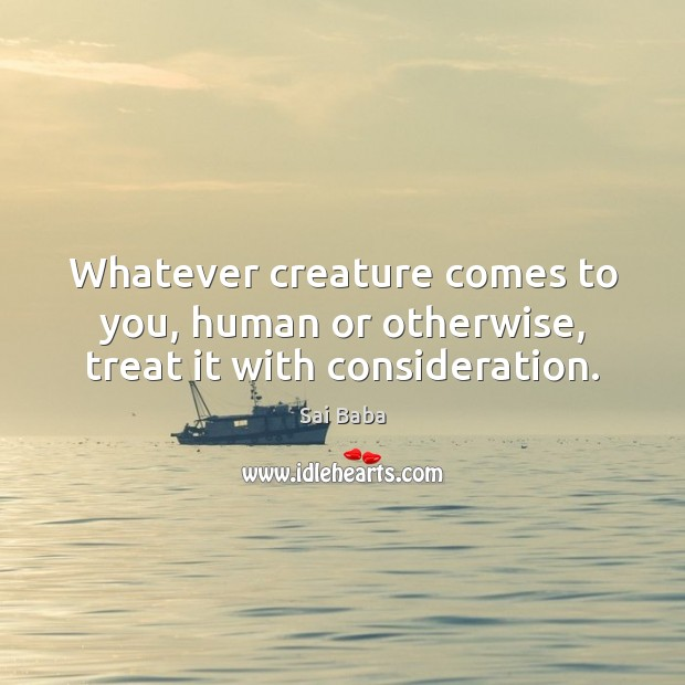 Whatever creature comes to you, human or otherwise, treat it with consideration. Image