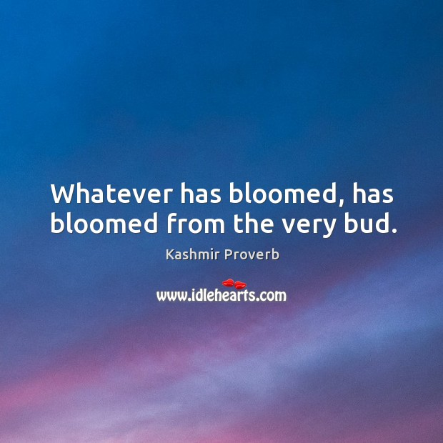 Whatever has bloomed, has bloomed from the very bud. Kashmir Proverbs Image
