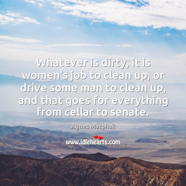 Image, Whatever is dirty, it is women's job to clean up, or drive