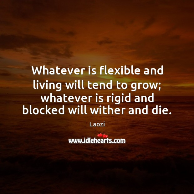 Whatever is flexible and living will tend to grow; whatever is rigid Laozi Picture Quote