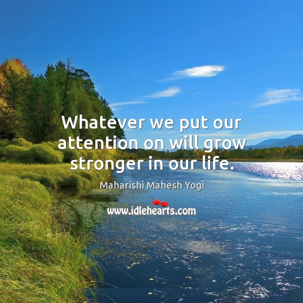 Whatever we put our attention on will grow stronger in our life. Image