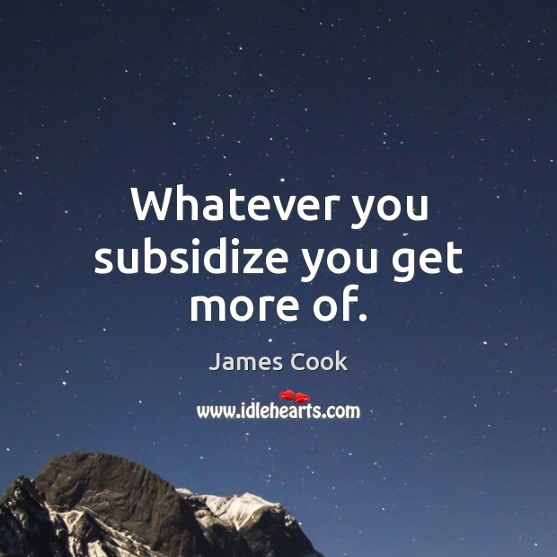 Whatever you subsidize you get more of. James Cook Picture Quote