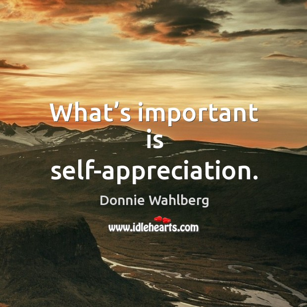 What's important is self-appreciation. Donnie Wahlberg Picture Quote